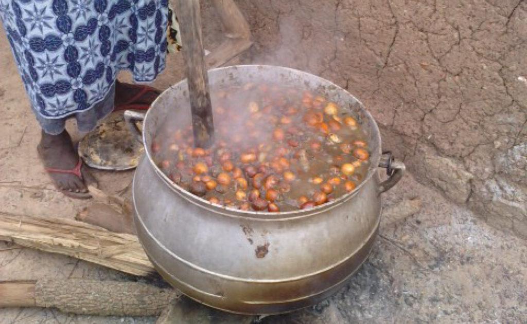 Burkina Faso - Foyer amélioré Karité