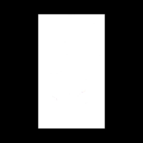 OLVEA - Argan oil production in Morocco - Argan flower