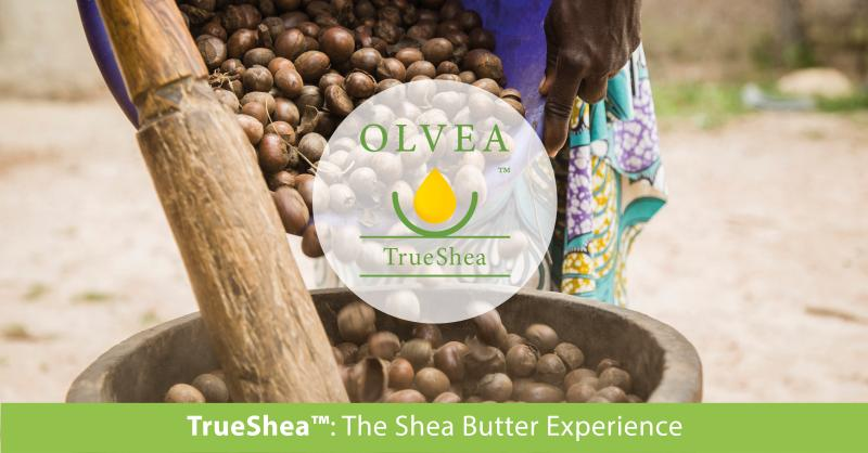 natural pure organic fair trade true shea butter